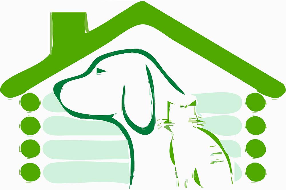 Casa verde con cane e gatto