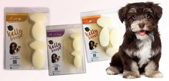 Accessorio kelly brush per pulire i denti del cane senza spazzolino