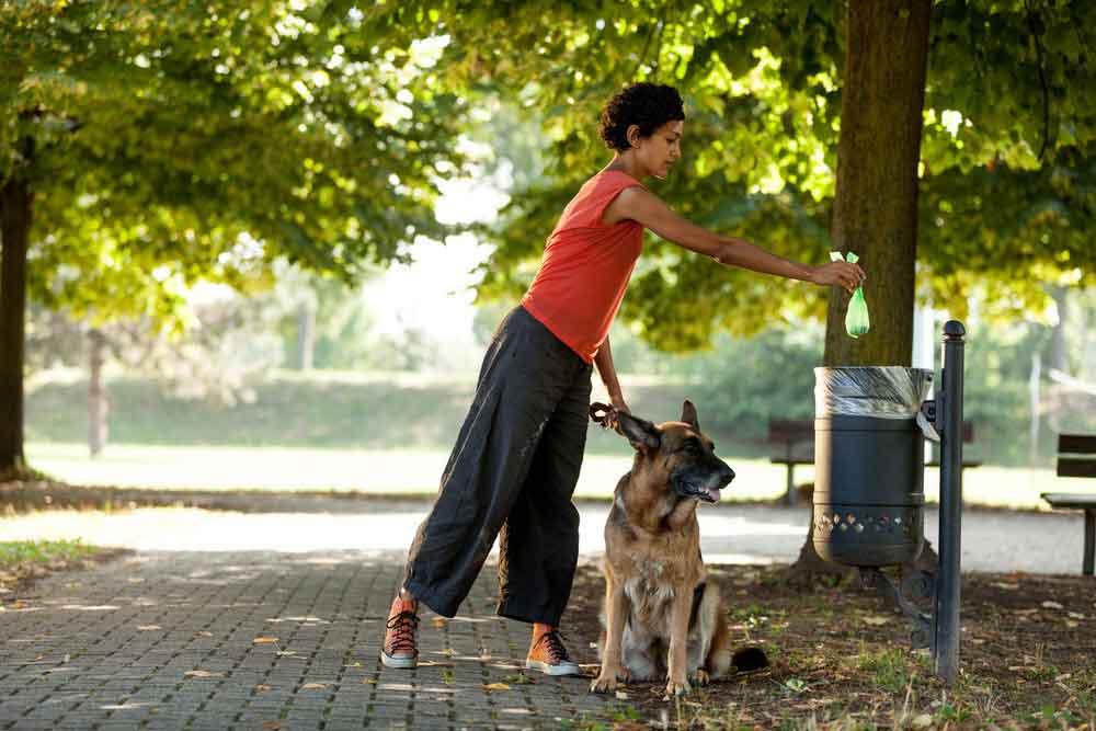 Donna che raccoglie e getta gli escrementi del proprio cane